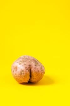 明るい黄色の背景に尻の形をした生の面白いジャガイモ。