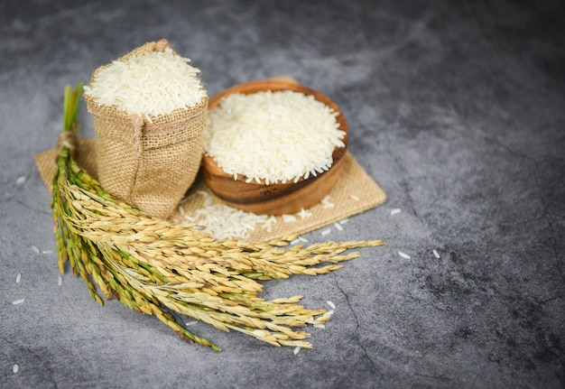 Raw jasmine rice grain with ear of paddy agricultural products for food in asian - thai rice white on bowl and sack background