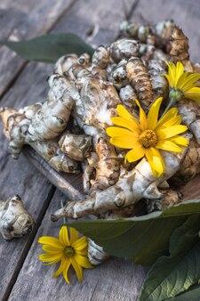 生のキクイモ。木製のテーブルのtopinambur野菜の根。