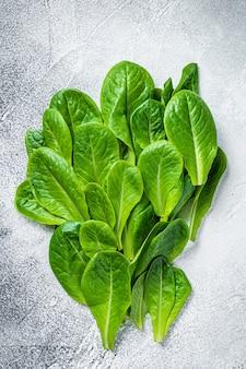 Сырые листья салата ромэн на кухонном столе