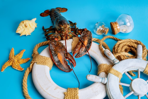 Raw lobster on rescue circle with starfish on blue surface