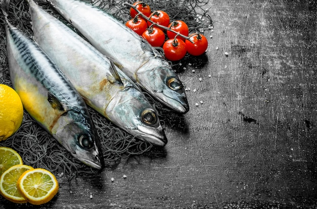 Raw mackerel with lemon slices and tomatoes. on dark rustic
