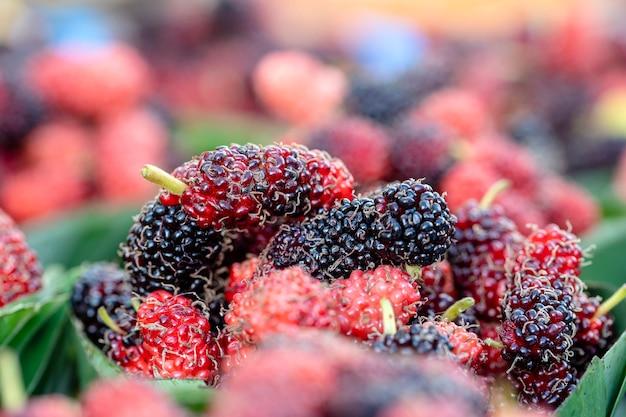 태국 현지 거리 시장에서 판매되는 생 뽕나무. 열대 과일, 클로즈업