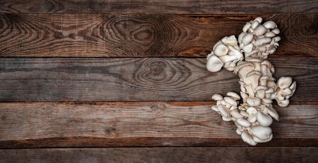 木製のテーブルに生牡蠣のキノコ。テキスト用のスペースをコピーします。バナー。
