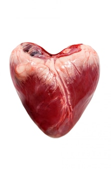 Raw pork heart isolated on a white