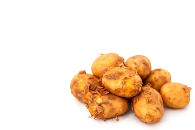 격리에 원시 감자 피드. 신선한 감자