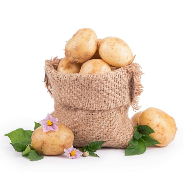 흰색 표면에 고립 된 삼 베 가방에 원시 감자