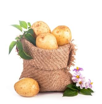 Сырой картофель в мешковине, изолированной на белой поверхности