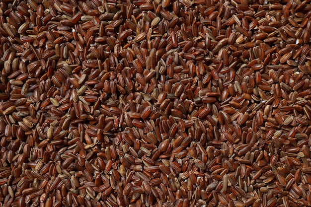 Raw red unpolished rice as background rubin grains closeup bhutanese uncooked organic brown rice for...