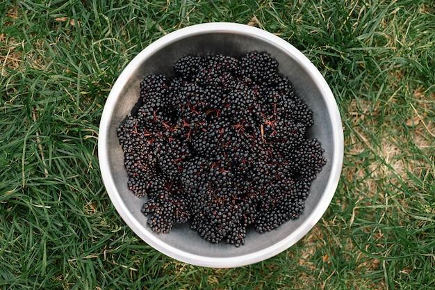 Raw ripe elderberry in a bowl standing on a green grass top down view clusters fruit black elderberr...