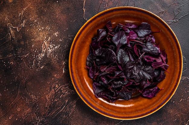원시 루비 또는 붉은 근대 샐러드 소박한 접시에 leafs. 어두운 배경입니다. 평면도. 공간을 복사합니다.