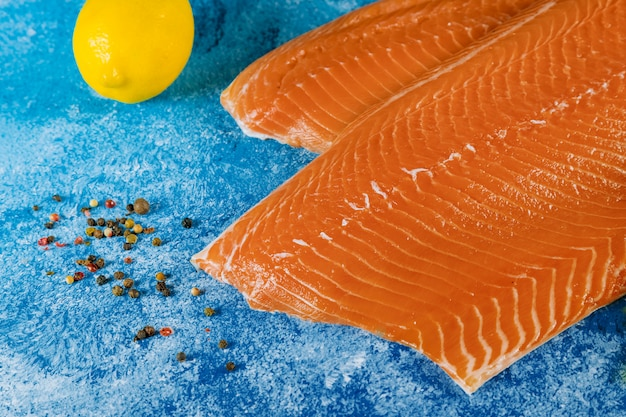 Raw salmon fillet ingredients for marinade