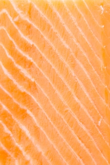 Raw salmon meat