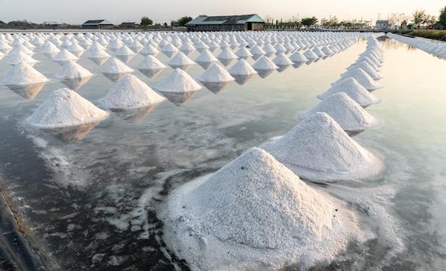 Raw salt in samut songkhram thailand