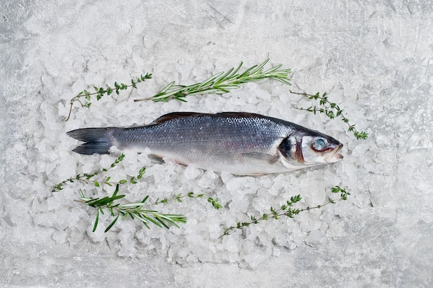 Raw sea bass on ice with rosemary and thyme.