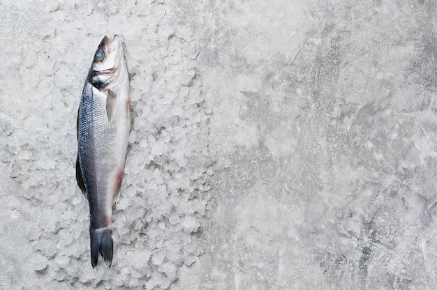 Raw sea bass on ice.