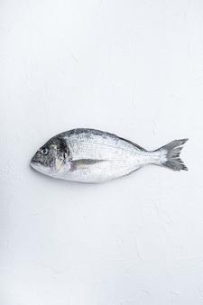 흰색 배경, 위쪽 전망에 있는 생 도미 또는 길트 헤드 도라다 물고기.