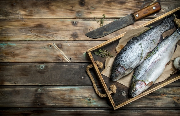 Raw sea fish salmon on a wooden tray with thyme. on wooden background
