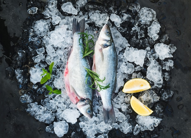 Raw seabass with lemon and rosemary on chipped ice over dark stone wall