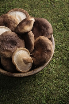 Raw shiitake mushrooms in a wooden bowl with green grass background.