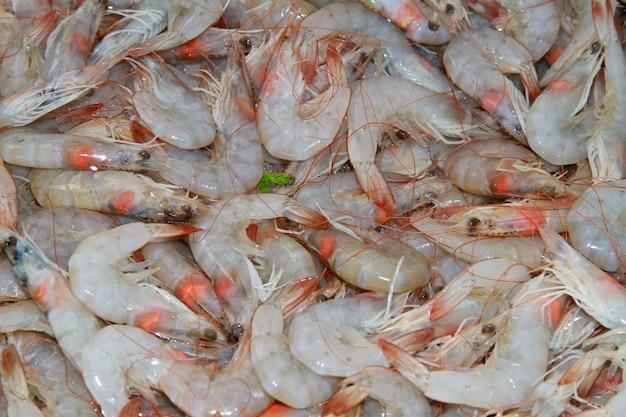 Raw shrimp on market