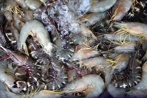 Raw shrimps
