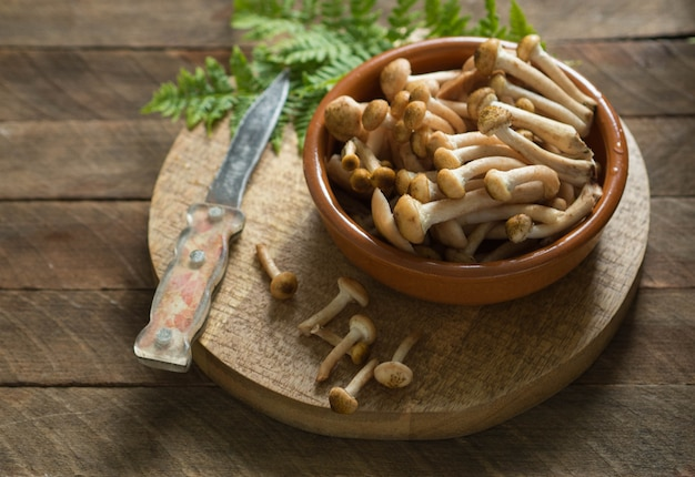 Raw small  honey mushrooms in a brown bowl on wooden board