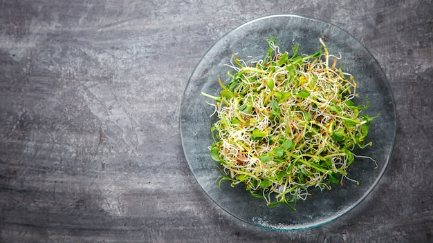 Raw sprouts microgreens. snack on summer.