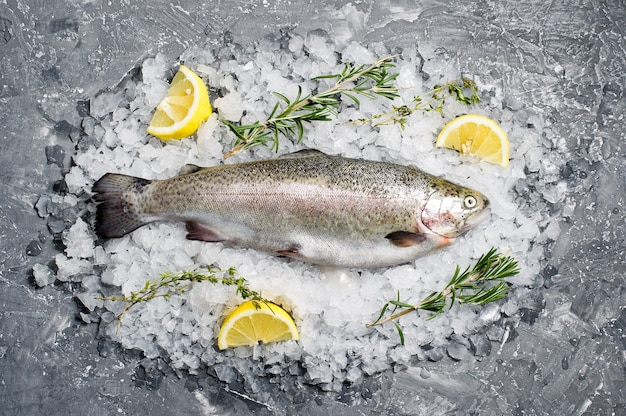 Raw trout on ice. ingredients rosemary, lemon.
