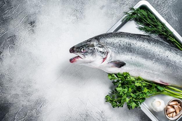 Сырой сырой морской лосось целая рыба в подносе с зеленью