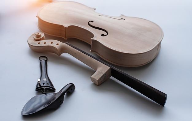 Raw violin