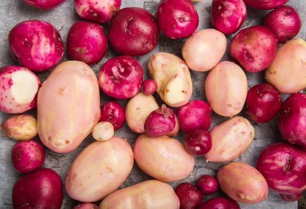 生の洗浄色ミックス若いジャガイモ、上面図。クロップ画像 。色とりどりの食べ物