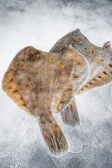 Raw whole flounder flatfish fish on kitchen table. white background. top view.