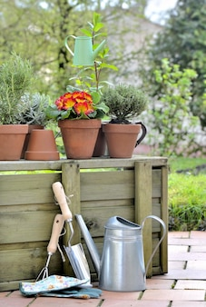Rdening tools and potted flowers