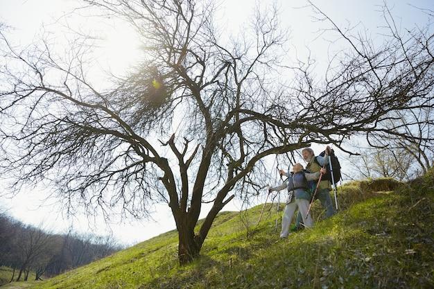 함께 정상에 도달했습니다. 화창한 날에 나무 근처에 녹색 잔디밭에서 산책하는 관광 복장에 남자와 여자의 세 가족 커플