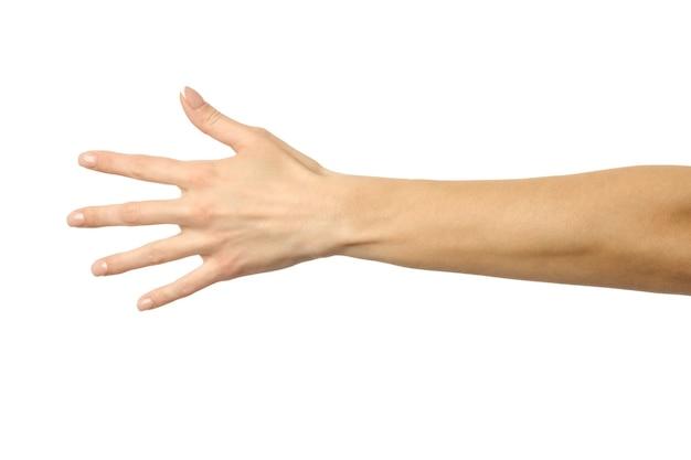 Reaching hand close up