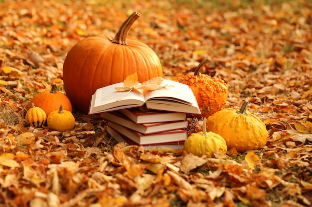 Reading books about autumn