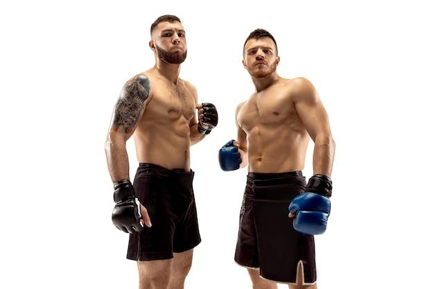 成長する準備ができました。白いスタジオの背景に孤立してポーズをとる2人のプロの戦闘機。フィットする筋肉質の白人アスリートまたはボクサーのカップルが立っています。スポーツ、競争、人間の感情の概念。