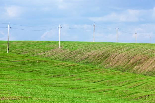 穀物の新しい作物、高電圧ポールを栽培するための実際の農業分野