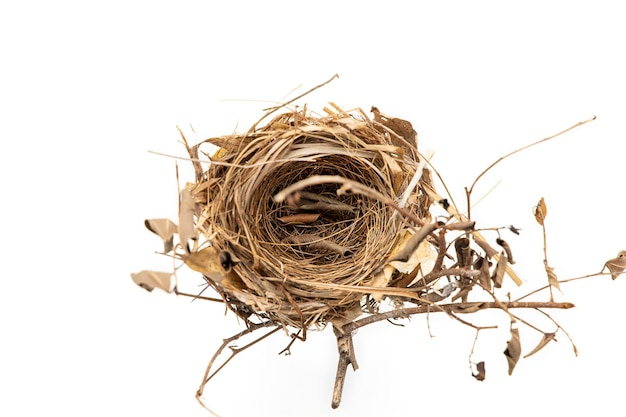 Real bird nest isolated on white.