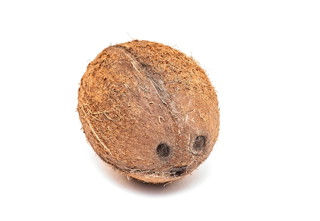 Real coconut isolated