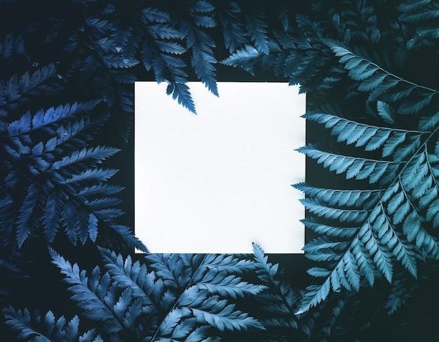 Настоящие листья папоротника экзотического цвета и квадратный лист бумаги