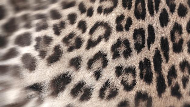 Крупный план настоящего меха леопарда для фонового пользователя