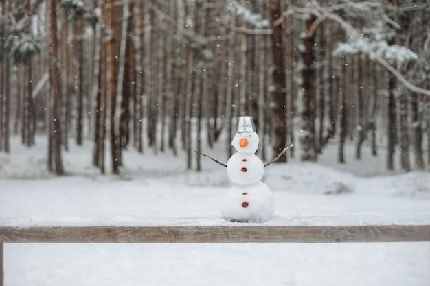 Реальный сделанный снеговик с ведром стоя в зимнем пейзаже на скамейке.
