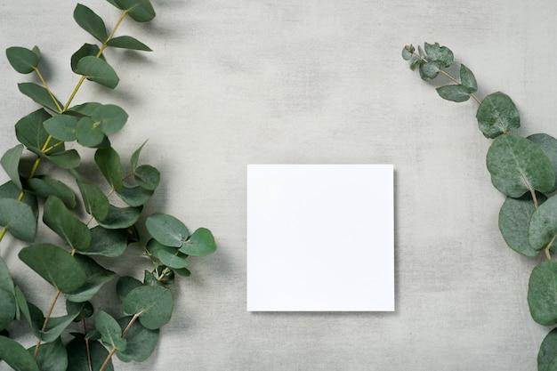 本物の写真。ユーカリの枝が付いている正方形の招待状のモックアップ。コピースペース、ライトグレーのコンクリートの背景を持つ上面図。ブランディングと広告のためのテンプレート