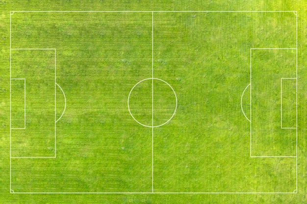A real soccer field, football field. green grass. green striped lawn. white markings on the grass