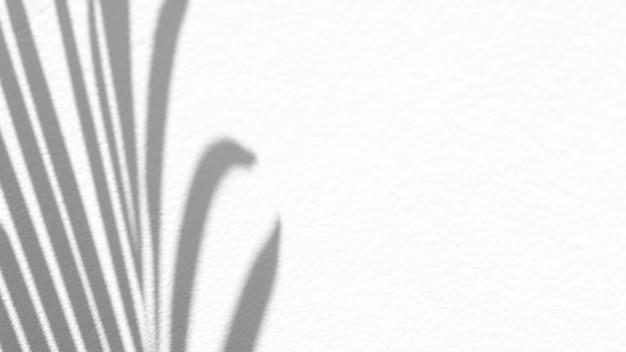 흰색 질감 배경에 현실적이고 유기 열대 나뭇잎 자연 그림자 오버레이 효과