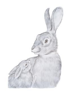 灰色の母ウサギと彼女の赤ちゃんの手描きのリアルな描画