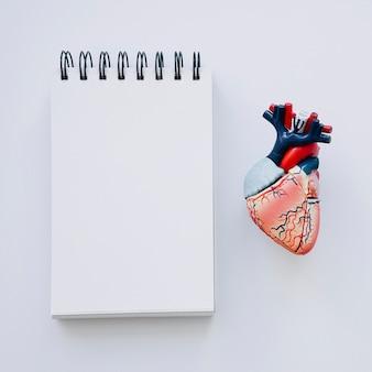 フォアグラウンドで現実的な心臓とノートブック