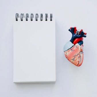 Realistic heart and notebook in foreground